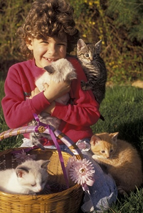 smiling kid with kittens